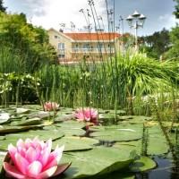 Villa Medici Hotel**** - a nyugalom szigete Veszprémben!