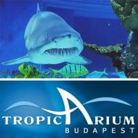 Tropicarium - ahol a természet csodái karnyújtásnyira vannak!