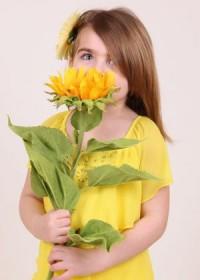 Pedagógusnapra, évzáróra virágot a VirágDealer belvárosi üzletéből!