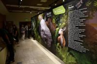 Idősíkok találkozása – különleges kiállítás nyílt az Ipolytarnóci Ősmaradványoknál!