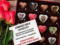"""Ajándékozz Valentin-napra belföldi élményeket és támogasd ezzel idén is az Eszkuláp Egyesület """"Valentin Projekt""""-jét!"""