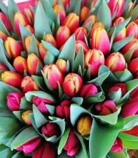Nőnapra virágot a VirágDealer belvárosi üzletéből!