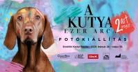 A Kutya Ezer Arca kiállítás a Gödöllői Királyi Kastélyban 2020. május 20-ig!